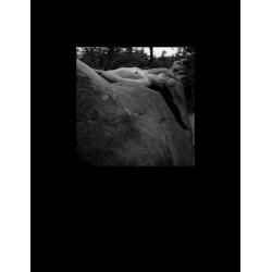 Body in stone print xIII